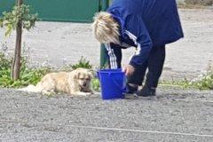 Martina-und-Paco-bei-der-Gartenarbeit